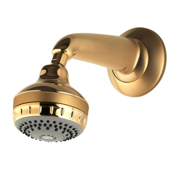 Fixed shower head kits Varispray-Gold