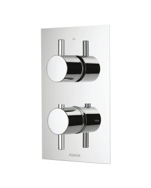 Rise DCV mixer shower Single Outlet